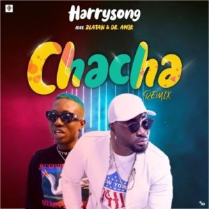 Harrysong ft Zlatan - Chacha remix