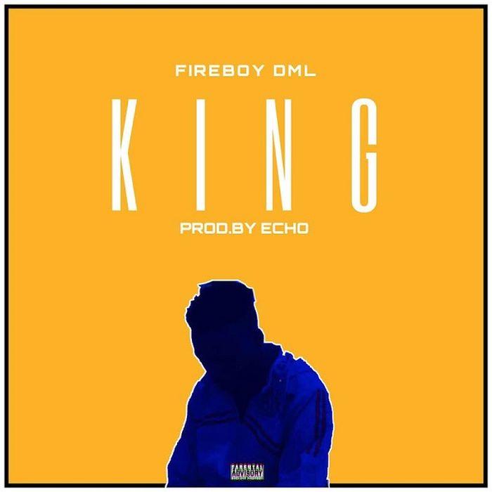 [FREE BEAT]: FIREBOY DML – KING (INSTRUMENTAL)