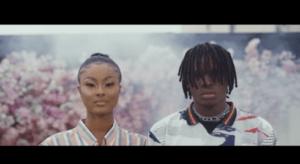 [VIDEO]: FIREBOY DML - KING