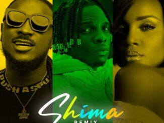 Idahams Ft Peruzzi & Seyi Shay – Shima Remix Mp3
