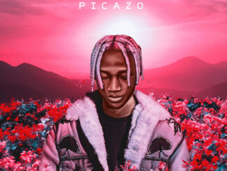 Picazo – Rest of Mind Mp3