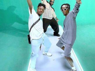 DJ Neptune Ft Joeboy & Laycon – Nobody Remix Mp3