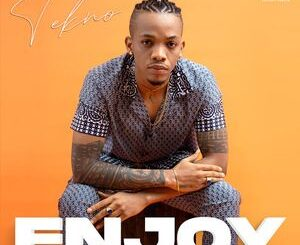 Tekno – Enjoy Mp3