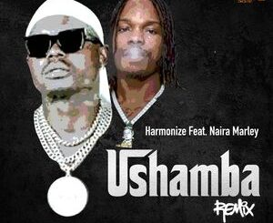 Harmonize Ft Naira Marley – Ushamba Remix Mp3