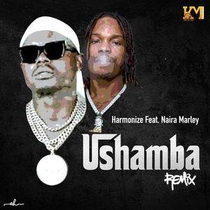 Harmonize Ft Naira Marley – Ushamba Remix Mp3
