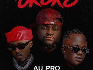 Au Pro Ft Ice Prince & Jamopyper – Okoko Mp3