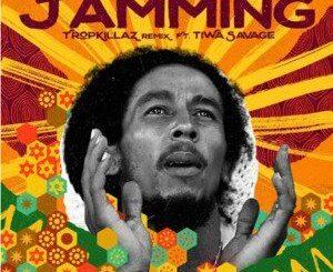 Bob Marley Ft Tiwa Savage – Tamming Remix Mp3