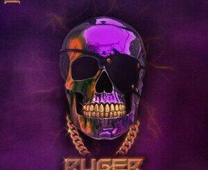 Ruger – Ruger Mp3