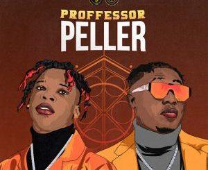 Seyi Vibez Ft. Zlatan – Professor Peller Mp3
